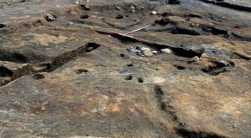 Steinaldermennesker bodde ikke bare i huler