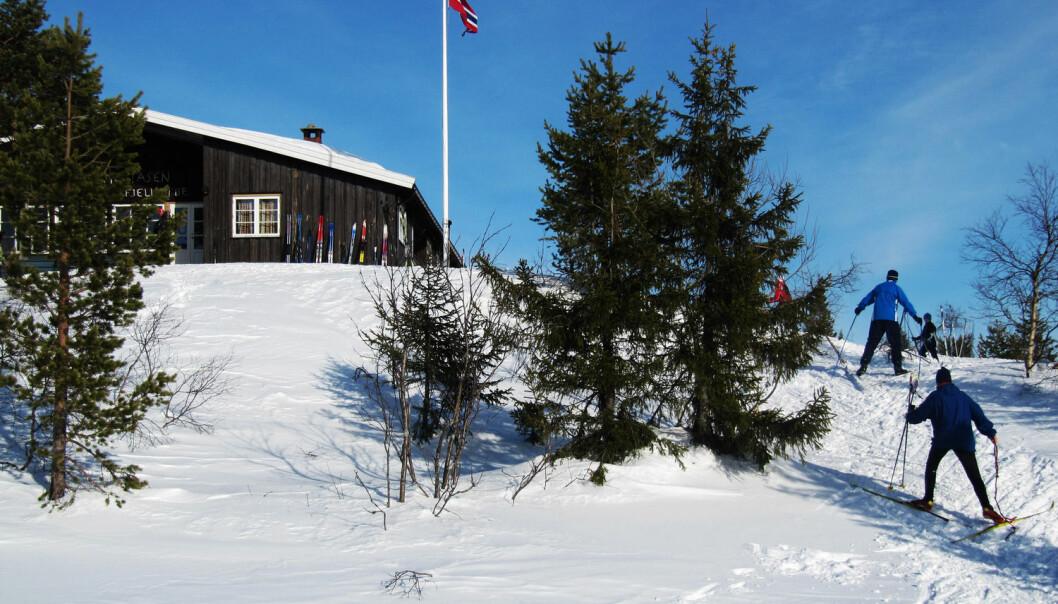 Hvis du er blant dem som bruker hytteboka for å skryte av hvor langt du går på ski, er du ikke alene.  (Foto: Berit Keilen / NTB scanpix)