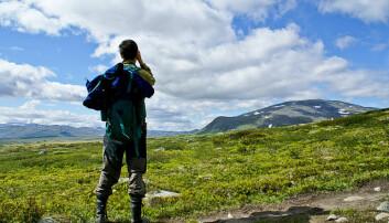 Menn innehar de viktigste posisjonene når spørsmål om naturvern og arealforvaltning skal avgjøres, ifølge ny doktorgrad. Her er en mann på tur i Dovrefjell-Sunndalsfjella Nasjonalpark.  (Foto: GuoJunjun/Wikimedia Commons)