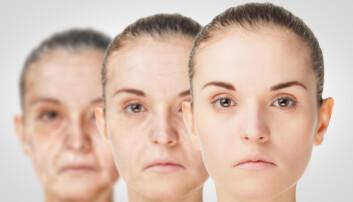 Fant mekanisme i hjernen som kan forsinke aldring