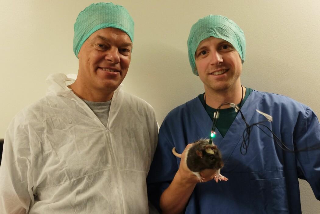 Edvard Moser og Jørgen Sugar i laboratoriet på Kavli Institute for Systems Neuroscience. Fra celler i hjernen har de funnet signaler som setter en tidskode på minnene våre. (Foto: Eivind Torgersen)