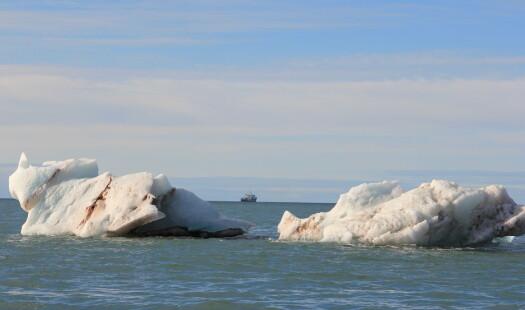 Blant kalvende isbreer i Kongsfjorden