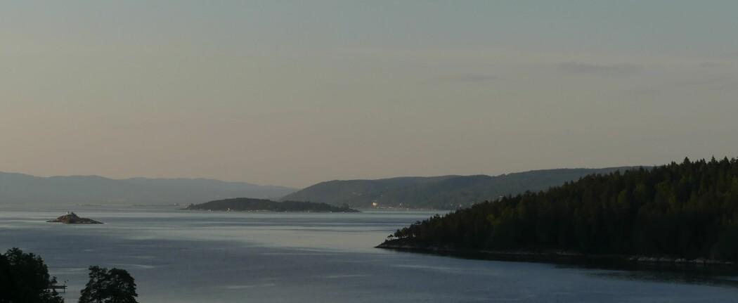 Utsikt over nordlige del av Oslofjorden. De bratte sidene langs Nesoddlandet og de store øyene Gråøya (i forgrunn) og Langåra er landskapsformer dannet etter forkastningssonene. (Foto: Ane K. Engvik)