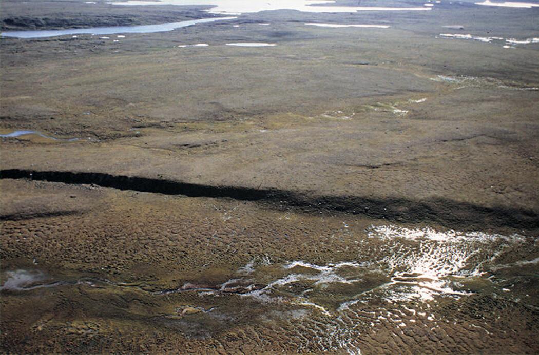 Stuoragurra-forkastningen i Masi er åtte mil lang og opptrer som en opptil sju meter høy, markert skrent i det flate landskapet på Finnmarksvidda. (Foto: Odleiv Olesen).