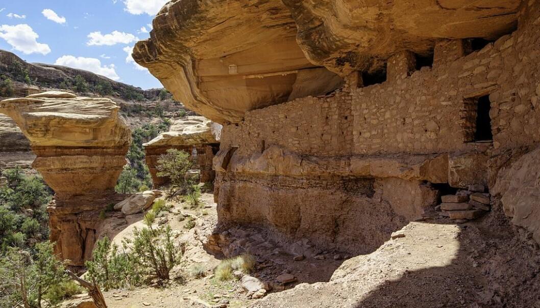 Dette er Moon House-ruinene i Bears Ears-området. Bygningene her ble reist mellom 1150 og 1300 av Anasazi-folket. (Foto: US Bureau of Land Management, Wikimedia Commons)