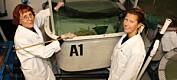 Vil lage skreddersydde vaksiner for oppdrettsfisk