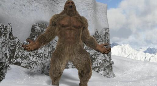 Den avskyelige snømannen er bare en bjørn