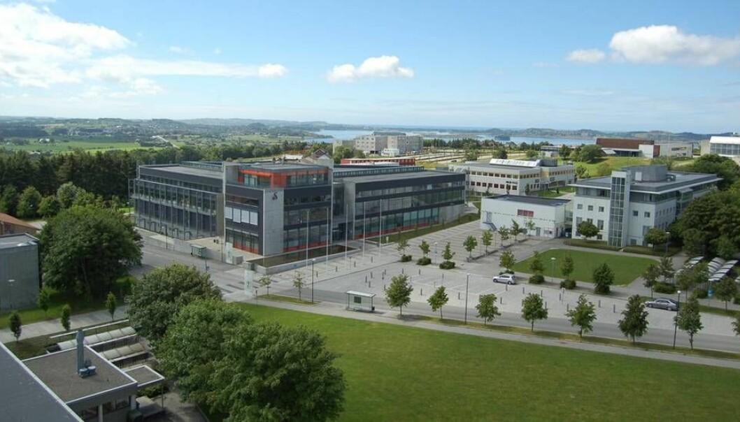 Nils Rune Langeland har vært ansatt ved Universitetet i Stavanger siden 2008. Han skal ha blitt orientert i begynnelsen av oktober om at universitetet ønsket å avskjedige ham.  (Foto: UiS)