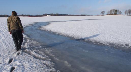 Hvordan påvirker snø og is åkrene våre?