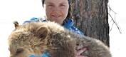 Norsk bjørneforskning i fransk dokumentar