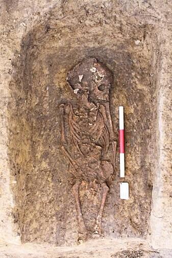 Skjelettet fra et fem år gammelt barn som ble begravet på Rådhusplassen for omkring 1000 år siden. (Foto: Københavns Museum)