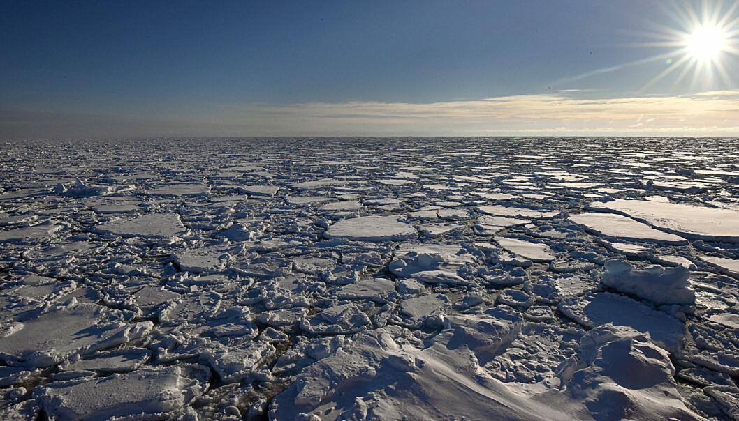 Det er viktig for forskerne å ta prøver av mange forskjellige smeltevannsdammer og isformasjoner. (Arkivfoto: Gunnar Sætra / Havforskningsinstituttet)