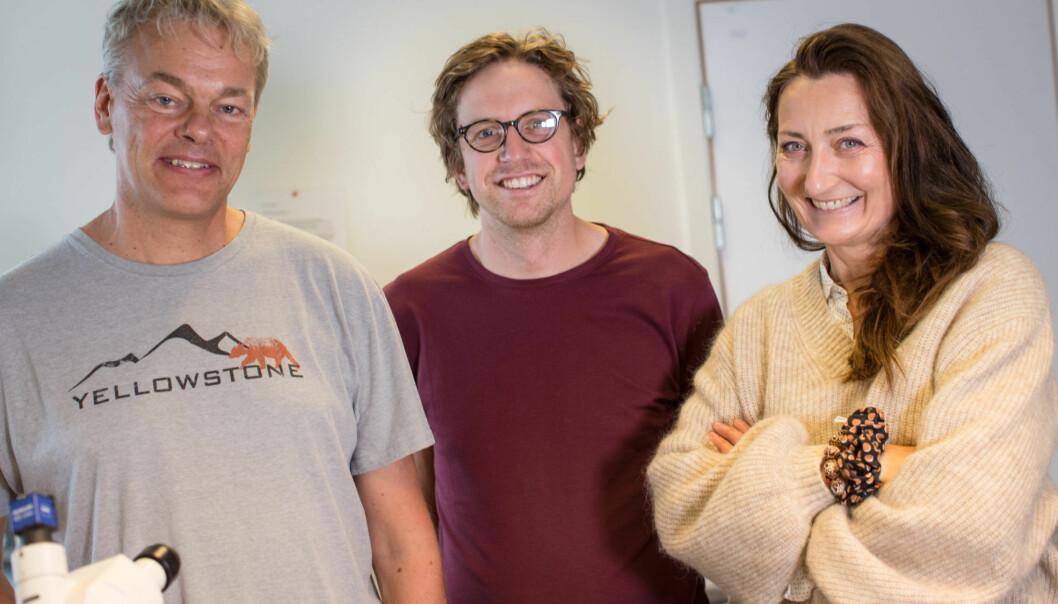Edvard Moser, Jørgen Sugar og May-Britt Moser har oppdaget hvordan rottehjerner oppfatter tid. De har ikke løst Alzheimergåten. (Foto: Erlend Lånke Solbu, NRK)