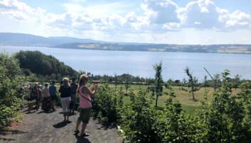 Forskere studerer feriebilder fra Mjøsa