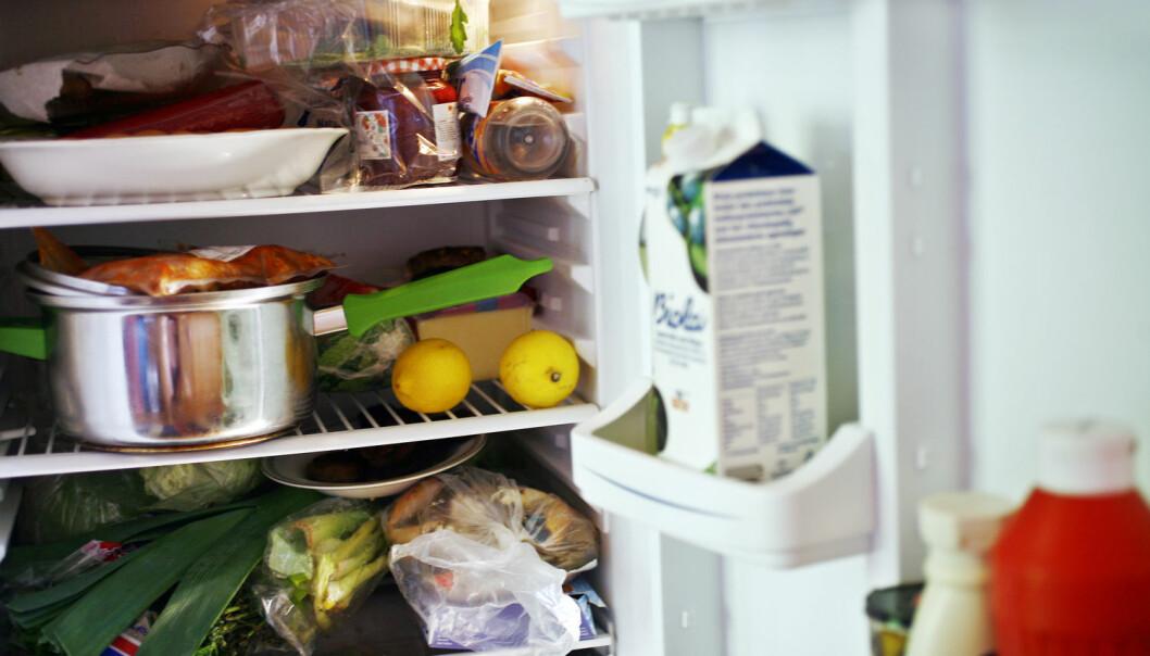 Mye av det vi har i kjøleskapet ender opp i søpla. Forskere forsøker å finne måter å unngå at maten blir søppel. (Foto: Shutterstock / NTB scanpix)