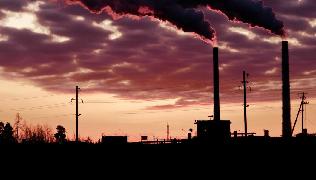 Miljøforsker tror ikke på øko-apokalypse