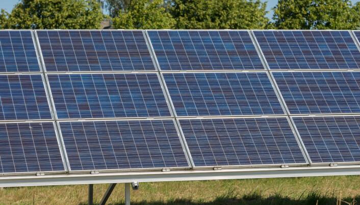 De beste solcellene som finnes i dag, er allerede mye flinkere enn plantene når det gjelder å fange solenergi. (Foto: Colourbox)