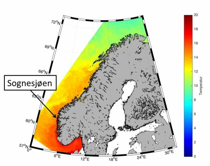 Målestasjonen på Sognesjøen helt ytterst i Sognefjorden.