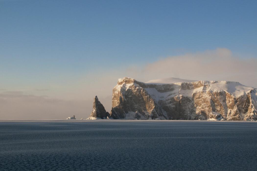 (Foto: Monica Sæle / Havforskningsinstituttet)