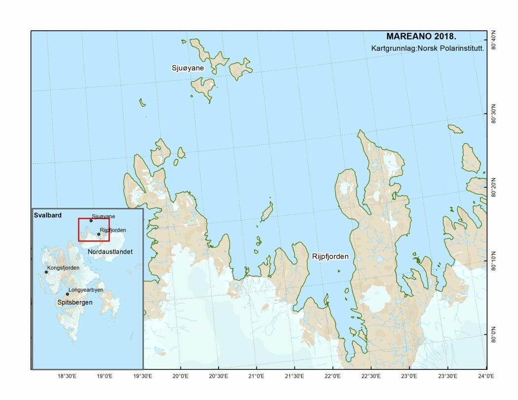 Kartet viser Rijpfjorden på Svalbard.