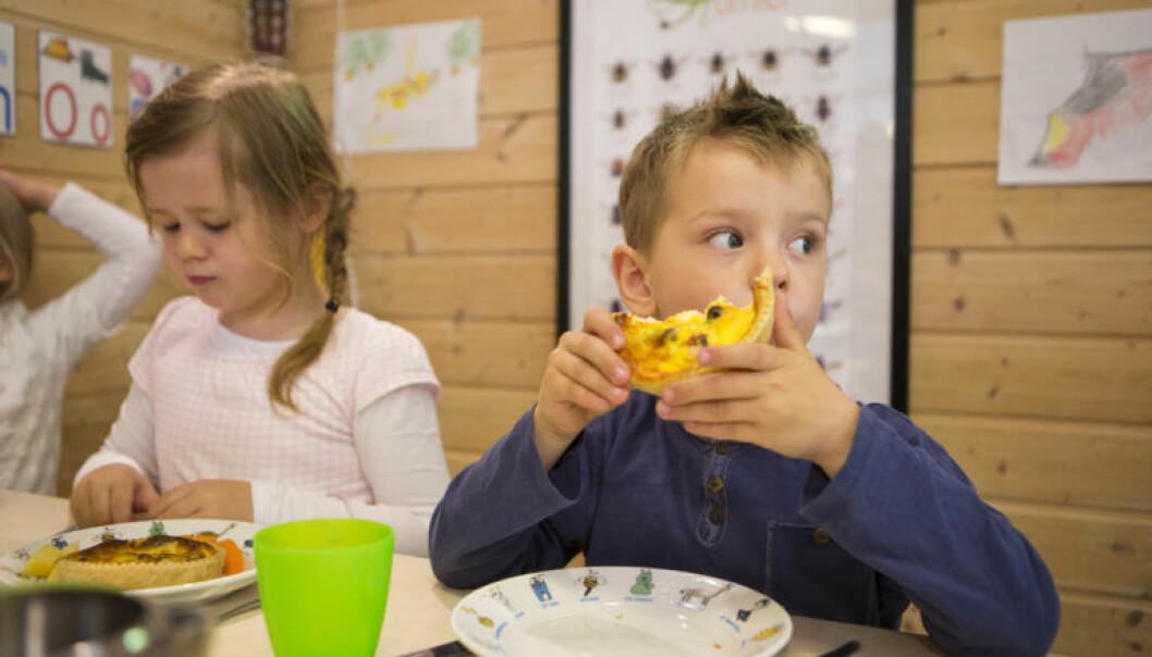 FINS-prosjektet er tverrfagleg, og det har involvert studiar på mennesket heilt frå fosterstadiet, via spedbarn, barnehagebarn, skuleungdom og vaksne. (Foto: Emil Breistein)