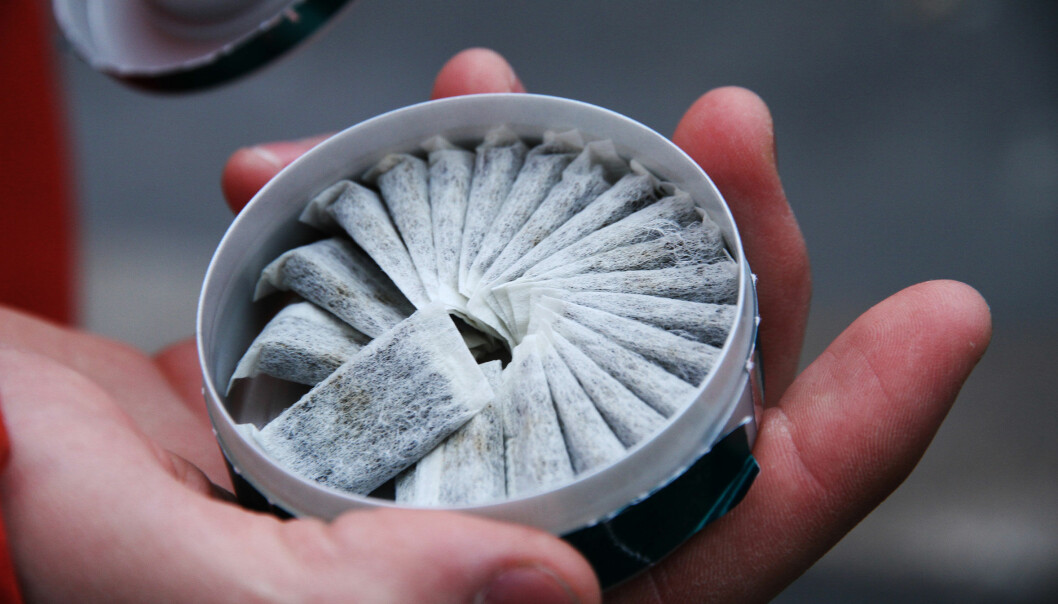 Oslo tingrett slo fast at Folkehelseinstituttets rapport om snus i 2014, ga et ufullstendig eller skjevt bilde av forskningen på kreftrisiko av snus.  (Foto: Microstock)