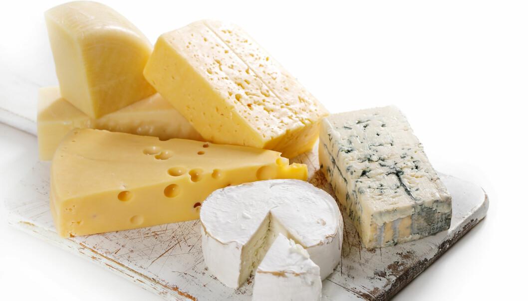 Gulost, gamalost og blåmuggost er kilder til vitamin K. Det er bakterier som syrner ostene og som samtidig produserer vitaminet. (Foto: Colourbox)