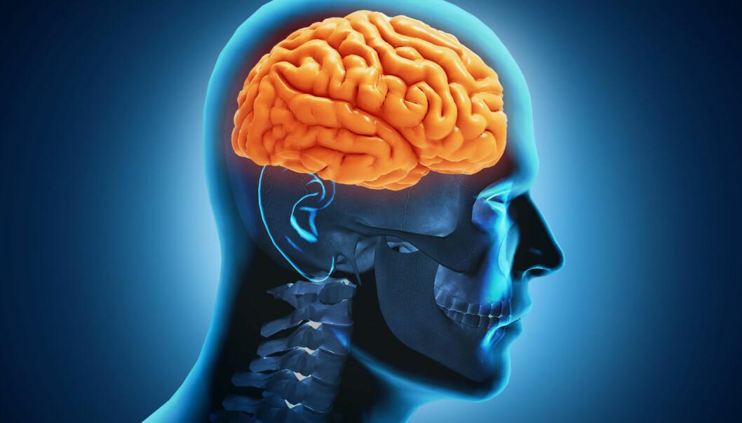Forskere leter etter en bedre måte å vurdere selvmordsrisiko. (Illustrasjon: Nerthuz / Shutterstock / NTB scanpix)
