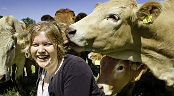 Norske bønder skal ta i bruk klimakalkulatorer