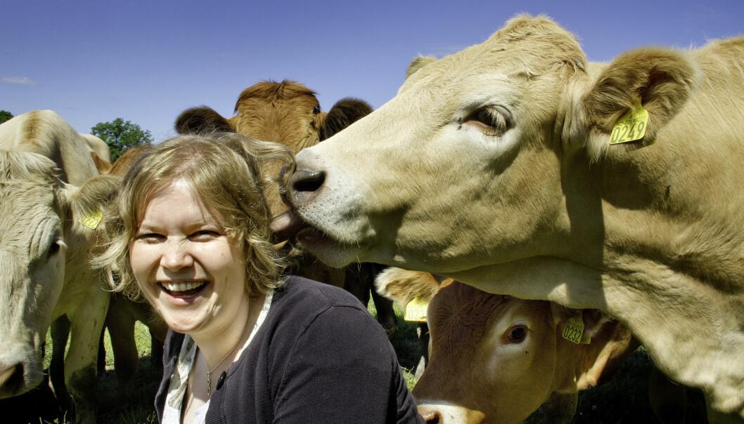 Forsker Bente Aspeholen Åby ved NMBU forteller om hvordan landbruket er i ferd med å ta i bruk klimakalkulatorer for hver enkelt produksjon. (Foto: Håkon Sparre)
