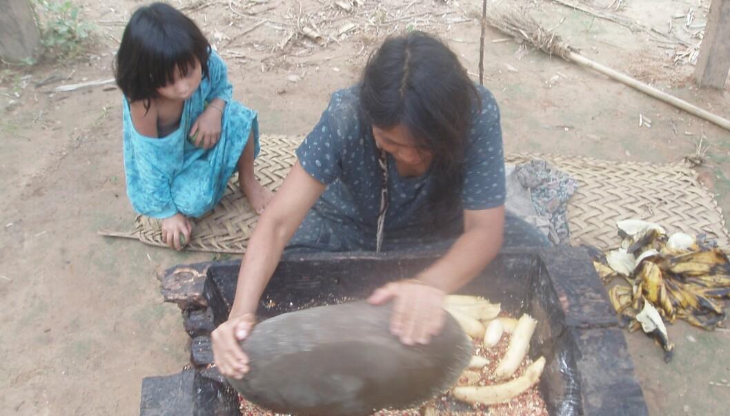 Tsimane-folket i Bolivia snakker i liten grad direkte til de minste barna. Barna lærer seg likevel å snakke. Kan de utvikle et godt språk ved å følge med på andre, undrer forskerne. (Foto: Jonathan Stieglitz)