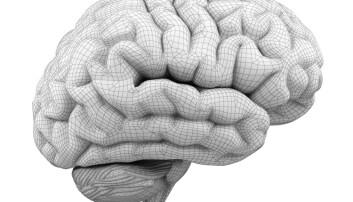 Forskernes hypotese var at de som fikk mer arbeidsminne også fikk bedre såkalt flytende intelligens. (Illustrasjon: anna-nt/Shutterstock/NTB scanpix)