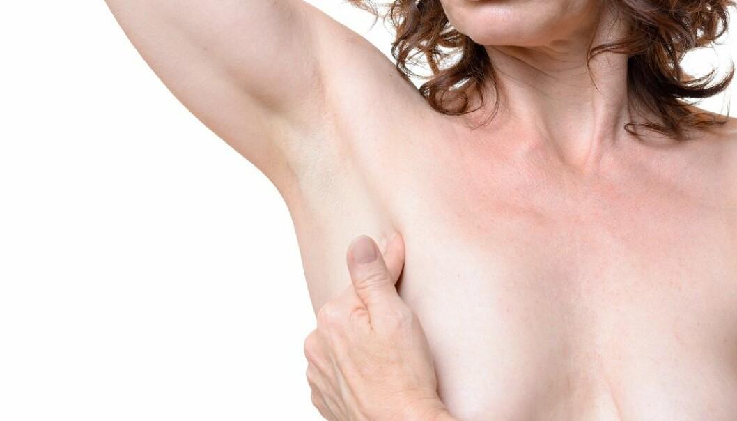 Bryster med lite fett er mer utsatt for kreft.  (Foto: michaelheim / Shutterstock / NTB scanpix)