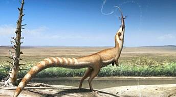 Dinosaur brukte farger til beskyttelse