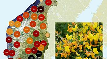 Nytt kart gjør det lettere å finne info om arter