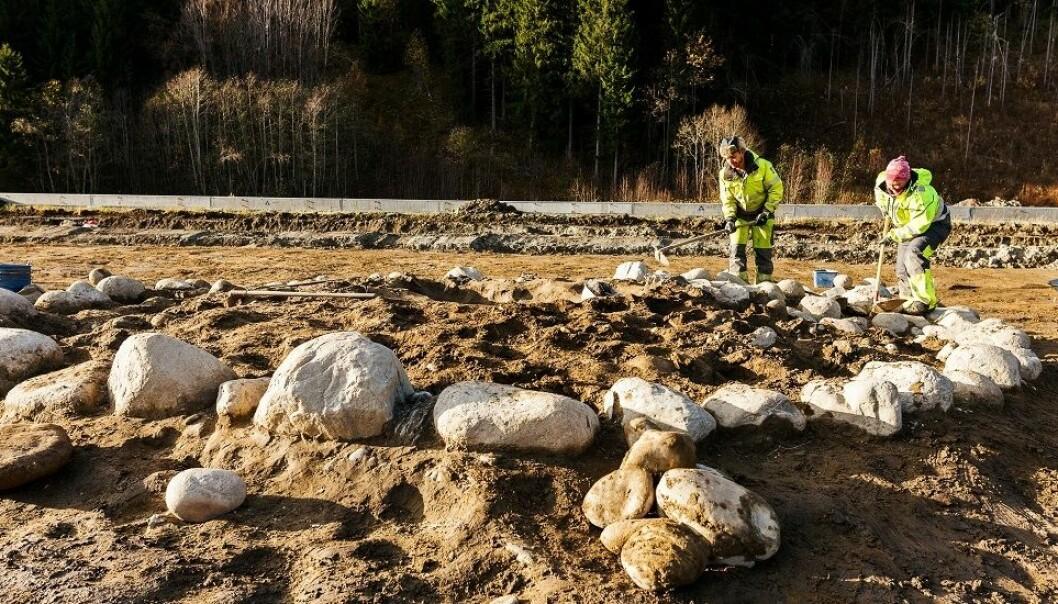 Utgravingene på Sandbrauta har blant annet avdekket denne gravrøysa. (Foto: Julie Gloppe Solem, NTNU)