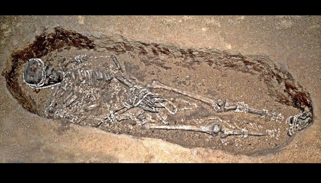 En av de begravde i Russland. Graven er sannsynligvis over 30 000 år gammel, og du kan tydelig se perlene og smykkene som har blitt lagt ned rundt skjelettet.  (foto: José-Manuel Benito Álvarez )