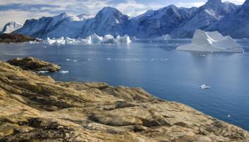 Forskere har fulgt med på hvilken påvirkning mindre salt har på økosystemet i og utenfor en fjord nordøst på Grønland. Bildet viser Scoresbysundet, en annen fjord øst på øya. Foto: Steve Allen / Shutterstock / NTB scanpix