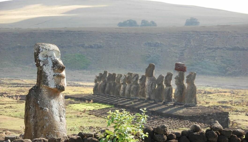 Bildet viser den største samlingen av statuer på Påskeøya. Stedet heter Ahu Tongariki. (Foto: Erik Thorsby)