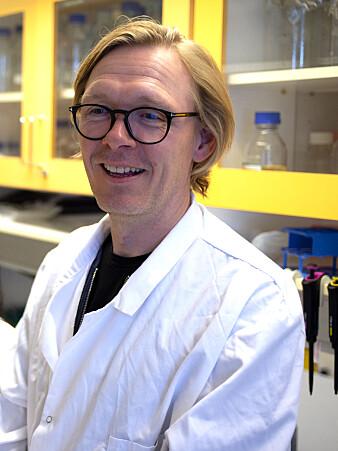 Professor Pål Jarle Johnsen. (Foto: Mathias Bruvoll, UiT)