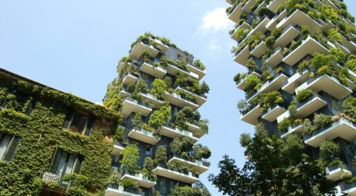 Norske arkitektar meiner levedyktige bygg ikkje berre kan målas på CO2-utslepp