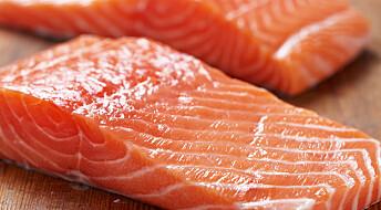 Mer vitaminer i laksefôret gir bedre fileter