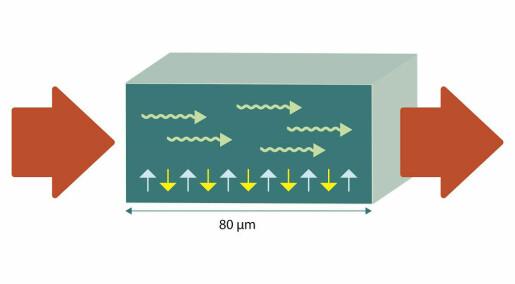 Nanoelektronikk: Av og til er 80 mikrometer nok