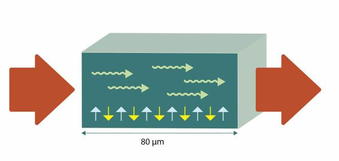 Nanoelektronikk:Av og til er 80 mikrometer nok