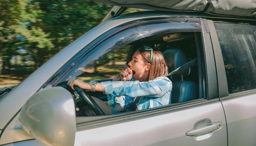 Senere skolestart redder liv – morgentrøtte tenåringer er farlige både bak rattet og til fots i trafikken. (Foto: Shutterstock)