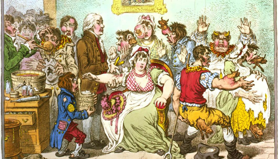 Da Jenner i sin tid lanserte ideen om å gi mennesker sykdom fra kyr, var mottagelsen så som så. På denne vitsetegning fra 1802 tyter små kyr ut av kroppen på de stakkars vaksinerte.  (Tegnet av James Gillray)