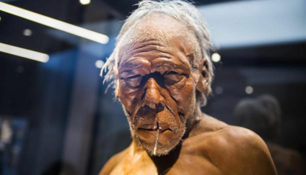 Hvorfor neandertalerne forsvant, blir fortsatt debattert, men en ting er sikkert: DNA viser at de på sitt vis lever videre som en del av oss. (Foto: Shutterstock/Nasjonalhistorisk Museum, Belgia)