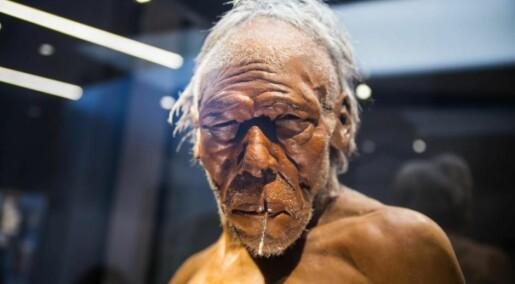Hvor kom neandertalerne fra?