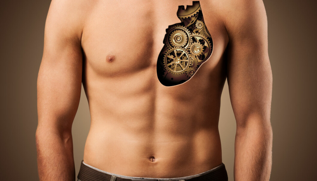 Kroppen er ikke en haug med deler, men et komplisert system som virker sammen, mener forskerne bak utstillingen på Medicinsk Museion i København.  (Foto: Vadim Georgiev / Shutterstock / NTB scanpix)