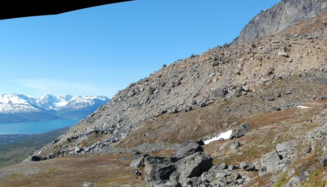 Her er den raskeste steinbreen i fjellområdet Ádjet i Skibotndalen i Troms. Bak til venstre skimtes tettstedet Skibotn og Lyngenfjorden. (Foto: Harald Øverli Eriksen)